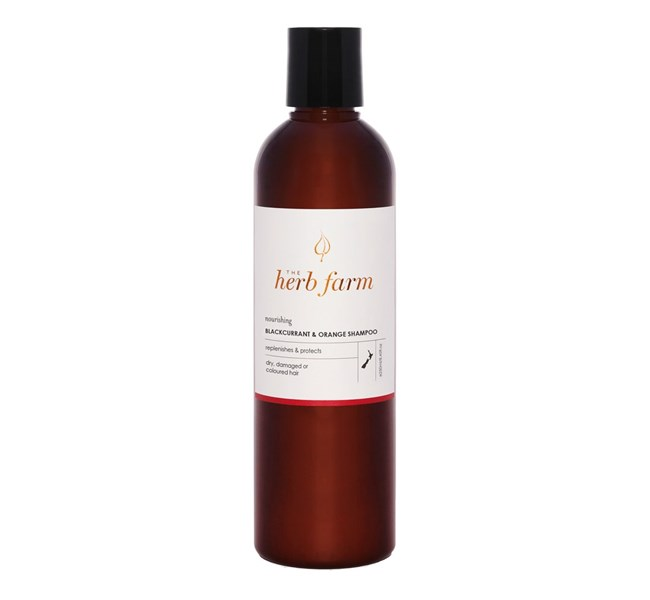 Nourishing Blackcurrant and Orange Shampoo