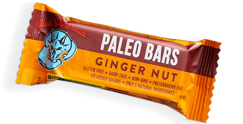 Paleo Bar Ginger Nut 45gm